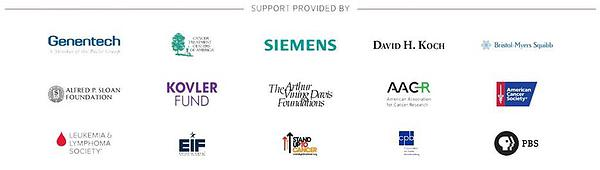 Companies Supporting A Cause