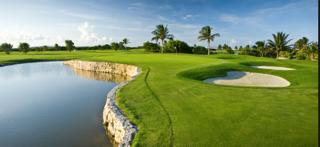 mccaddy-golf2